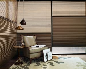 Hunter Douglas Window Blinds Pensacola, Florida
